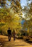 Paar dat hand in hand in de herfst loopt Stock Afbeelding