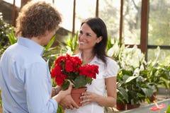 Paar dat in tuincentrum winkelt Royalty-vrije Stock Foto's