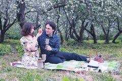 Paar in de boompicknick van de liefde openluchtappel Royalty-vrije Stock Afbeeldingen