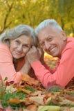 Paar in de herfstpark Stock Afbeelding