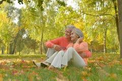 Paar in de herfstpark Stock Foto