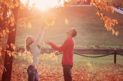 Paar in de herfstpark stock afbeeldingen