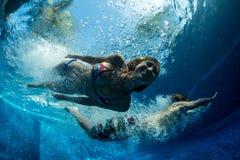 Paar in de pool Stock Afbeeldingen