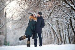 Paar in de winterpark Royalty-vrije Stock Foto's
