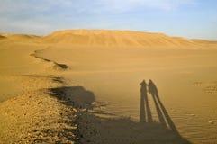 Paar in de woestijn stock fotografie