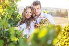 Paar die binnen - tussen rijen van wijnstokken lopen stock foto's