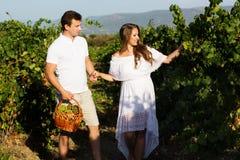 Paar die binnen - tussen rijen van wijnstokken lopen Stock Afbeeldingen