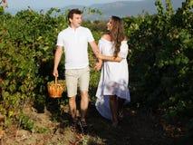 Paar die binnen - tussen rijen van wijnstokken lopen stock afbeelding