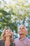 Paar die in bos omhoog kijken Royalty-vrije Stock Fotografie
