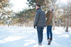 Paar die in de winterpark lopen Stock Afbeeldingen