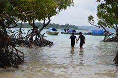 Paar die door de Handen van de Mangroveholding lopen stock foto