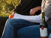 Paar die een picknick hebben Stock Afbeeldingen