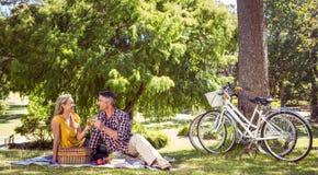 Paar die een picknick in het park hebben Royalty-vrije Stock Afbeelding