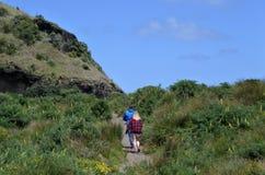 Paar die in KareKare-strand Nieuw Zeeland wandelen stock foto's