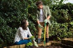 Paar die met elkaar interactie aangaan terwijl het tuinieren in de tuin royalty-vrije stock afbeelding