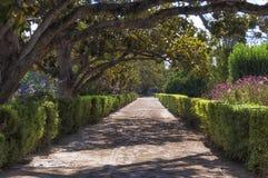 Paar die onderaan het weg bloemrijke park lopen Stock Afbeelding
