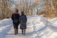 Paar die op een sneeuwsleep lopen Royalty-vrije Stock Afbeelding