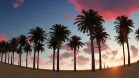 Paar die op Palm Beach en Vliegtuigvlieg lopen over de Palmen stock footage