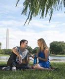 Paar die picknick in het park van Washington hebben Stock Fotografie