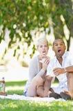 Paar die Ruw terwijl het Eten van Sandwiches tijdens een Picknick zijn royalty-vrije stock foto