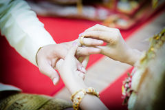 Paar die trouwring dragen Royalty-vrije Stock Foto's