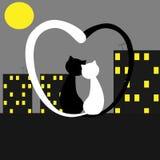 Paar die van katten op het maanlicht letten Royalty-vrije Stock Afbeeldingen