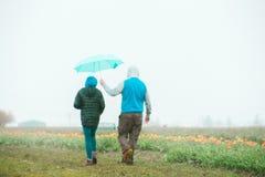 Paar die zich dichtbij een tulpengebied met de mannelijke holding een paraplu over het hoofd van het wijfje bevinden stock foto's
