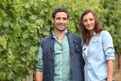 Paar die zich in het midden van wijnstokken bevinden Stock Foto's
