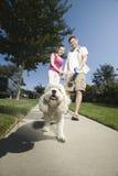 Paar-gehender Hund entlang Pflasterung Lizenzfreie Stockbilder