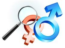 Paar-Geschlechts-Symbole unter Vergrößerungsglas Stockbild