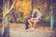 Paar in gouden daling Stock Foto's