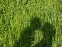 Paar in het gras Stock Afbeeldingen