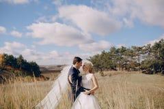 Paar in het hout & stad stock fotografie