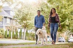 Paar het Lopen Hond langs Straat In de voorsteden stock foto's