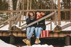 Paar het spelen harmonika samen in de zitting van het de winterpark op floo royalty-vrije stock foto's