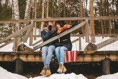 Paar het spelen harmonika samen in de zitting van het de winterpark op floo royalty-vrije stock afbeelding