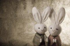 paar Japanse konijnen en document achtergrond Royalty-vrije Stock Afbeeldingen