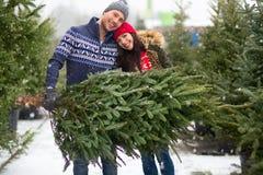 Paar-kaufender Weihnachtsbaum lizenzfreie stockbilder