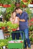 Paar kauft Anlagen in dem Garten-Center lizenzfreie stockbilder