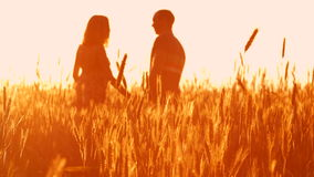 Paar in liefde bij zonsondergang in tarwe stock videobeelden