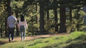 Paar in liefde die in nationaal park lopen en met hun handen samenhouden stock video