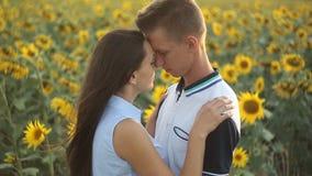 Paar in liefde op een gebied van zonnebloemen die elkaar in de avond koesteren bij zonsondergang stock footage