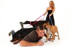 Paar met Honden Stock Foto's
