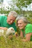 Paar met stuk speelgoed schapen Royalty-vrije Stock Fotografie