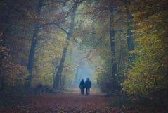 Paar in mistig bos stock foto's