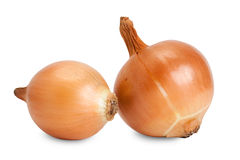 Paar onions isolated on white. Background Royalty Free Stock Photography