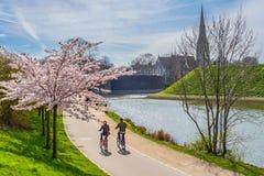 Paar op fietsen Stock Afbeeldingen