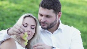 Paar op picknick stock video
