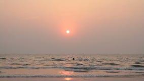 Paar schwimmt im Ozean stock video
