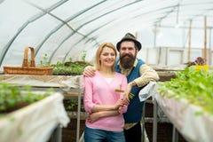 Paar in serre paar die in serre werken de arbeiders die van het serrepaar bloemen planten familiepaar binnen stock foto